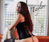 Seattle Escort Tiffani Taylor Adult Entertainer, Adult Service Provider, Escort and Companion.