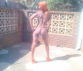 Pretoria Escort Lebo Adult Entertainer, Adult Service Provider, Escort and Companion.