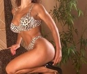 Walnut Creek Escort Debbie Adult Entertainer in United States, Female Adult Service Provider, Italian Escort and Companion. photo 3