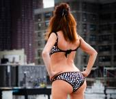 Raleigh Escort Sophia  Massage Adult Entertainer in United States, Female Adult Service Provider, American Escort and Companion. photo 4