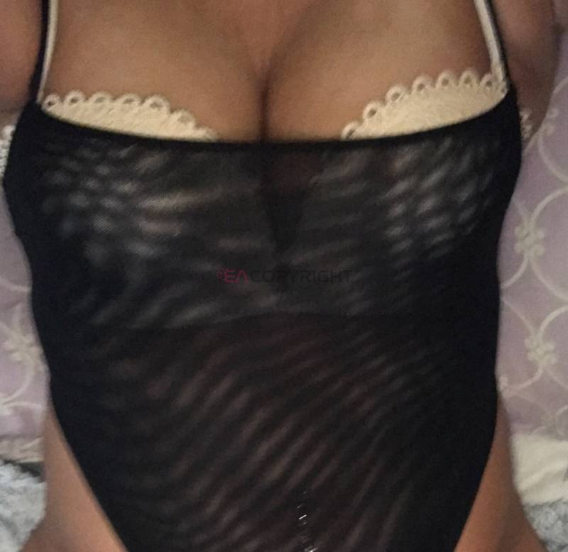albany new york ]escorts ]free