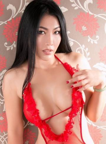 Bangkok Escort Sultry  Fawn Adult Entertainer in Thailand, Female Adult Service Provider, Thai Escort and Companion.